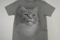 Kot_na_popielatej_koszulce-przod.